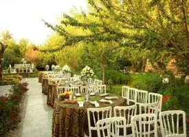 باغ عروسی تک درخت
